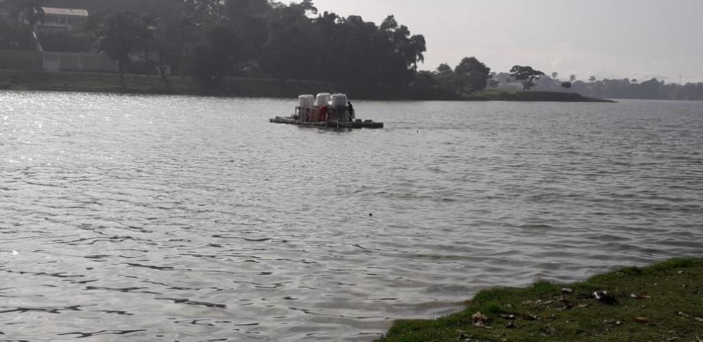 Tratamento da Lagoa da Pampulha