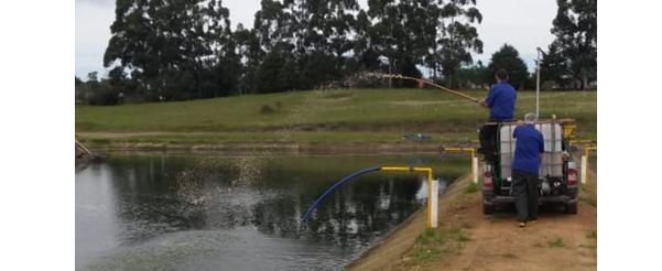 Segue aplicação do Enzilimp em águas uruguaias