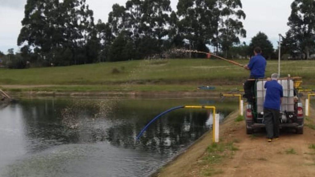 Segue aplicação do Enzilimp em águas uruguaias, Enzilimp