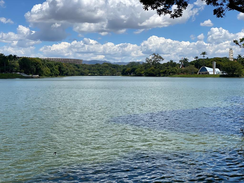 Qualidade visível na Lagoa da Pampulha, Enzilimp